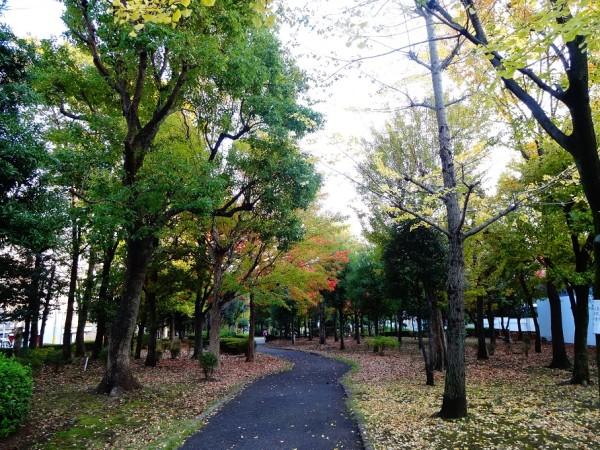 田道小学校目の前の公園