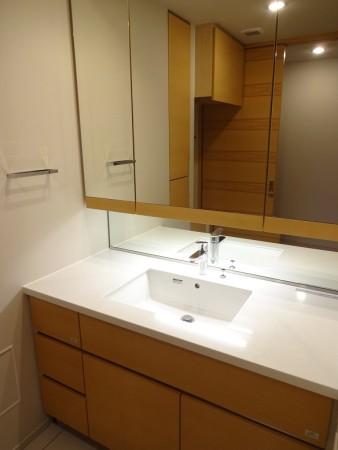 ブランズ渋谷常盤松606号室の洗面台